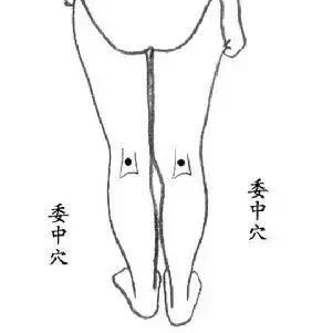 刺激這幾個穴位,激發人體強大的自我修復能力(補氣)