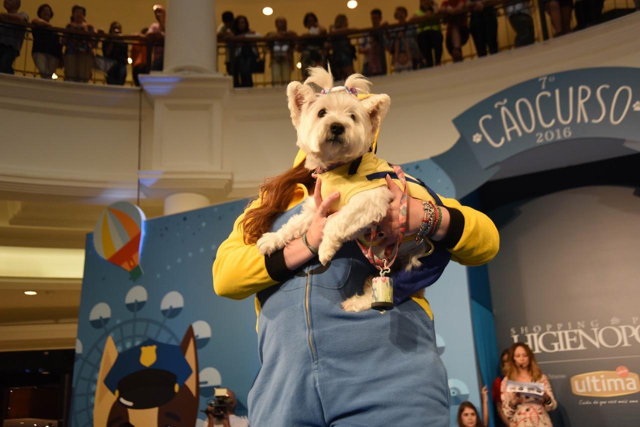Este ano, além do tradicional CãoCurso, todos os donos podem transformar  seus cães em estrelas de cinema e quem ainda não tem um cãozinho para  chamar de seu ... 2af9633c65