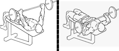 barbell bench press, chest exercises