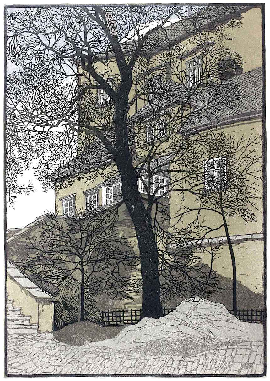 Hede Jahn, a civilized tree