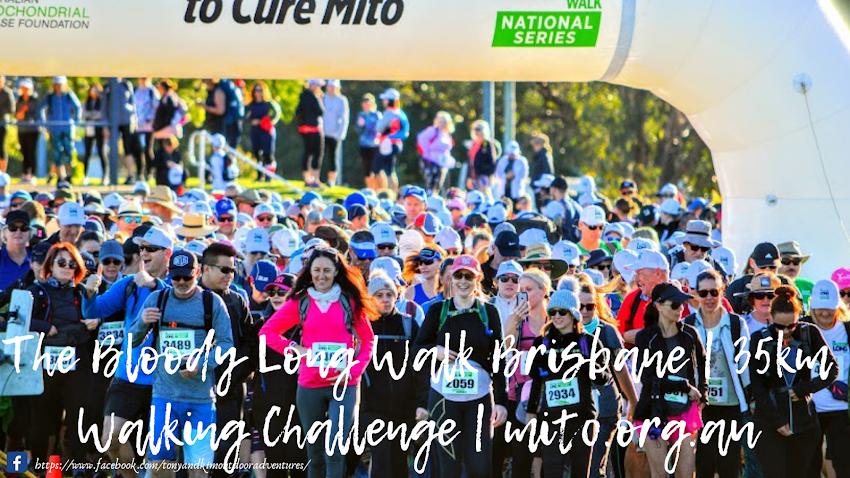 Volunteering At The Bloody Long Walk Brisbane 35km Walking Challenge