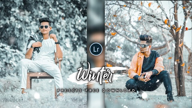 Winter Lightroom Presets .