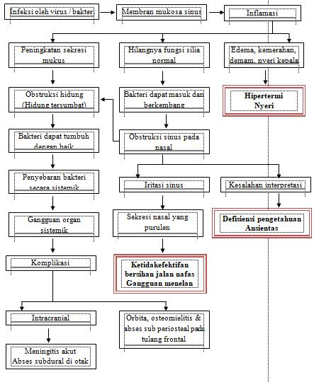 Askep Sinusitis Nanda Nic Noc Terbaru