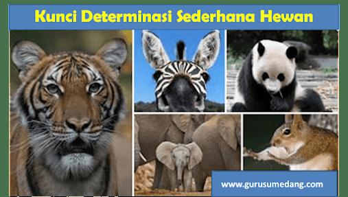 Ada beberapa cara mengklasifikasikan/menggolongkan mahluk hidup, salah satunya adalah kunci determinasi, dibawah ini contoh kunci determinasi sederhana untuk hewan.