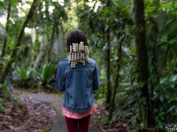 How to Experience the Costa Rican Rainforest ~ #KidFriendlyCostaRica