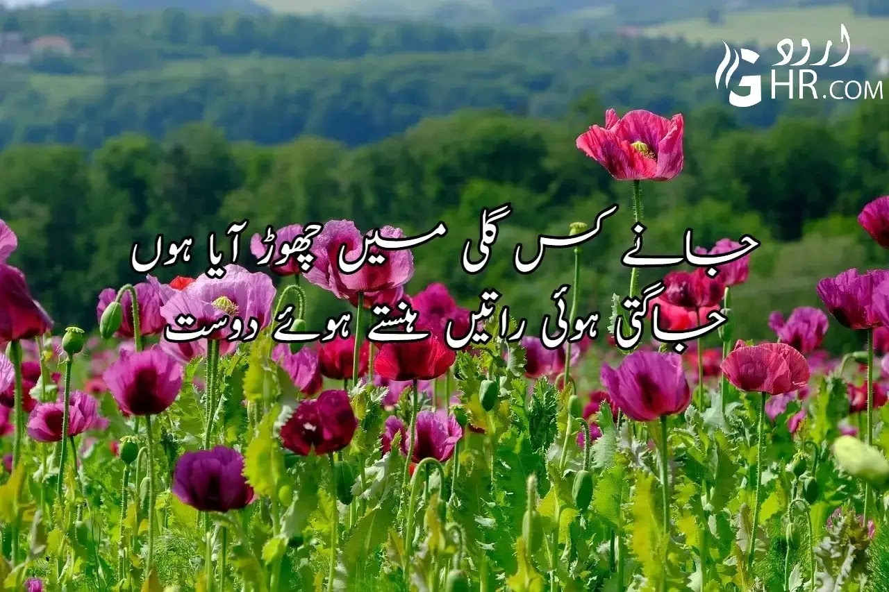 Friendship Poetry in Urdu