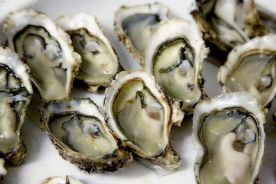 Foods To Keep Your Hair Healthy and Strong, hair loss, oysters
