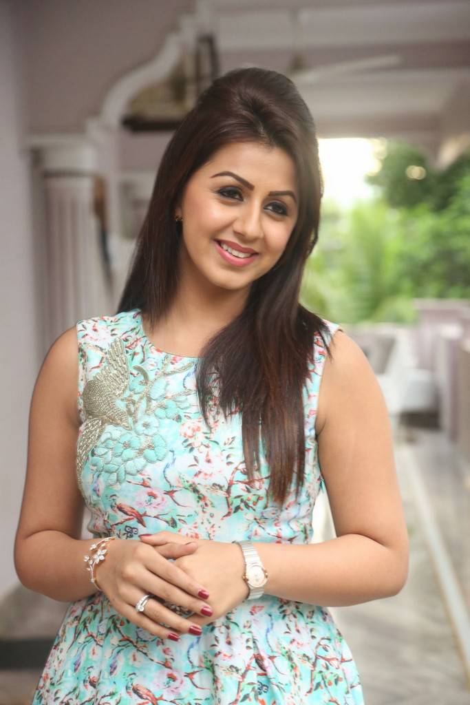 Nikki Galrani At Prema Leela Pelli Gola Movie Trailer Launch Pics