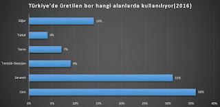 Türkiye bor madenini kullanabiliyor mu