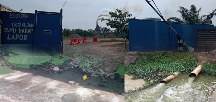 Limbah PT SUN Tubabar-Lapak Darmadi  Cemari Lingkungan, Pemerintah Daerah Tutup Mata