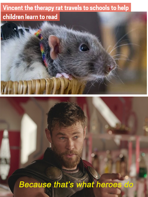 Vincent the therapy rat in a wholesome rat meme