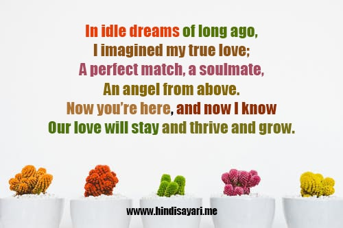 Latest Dil shayari with colorful text