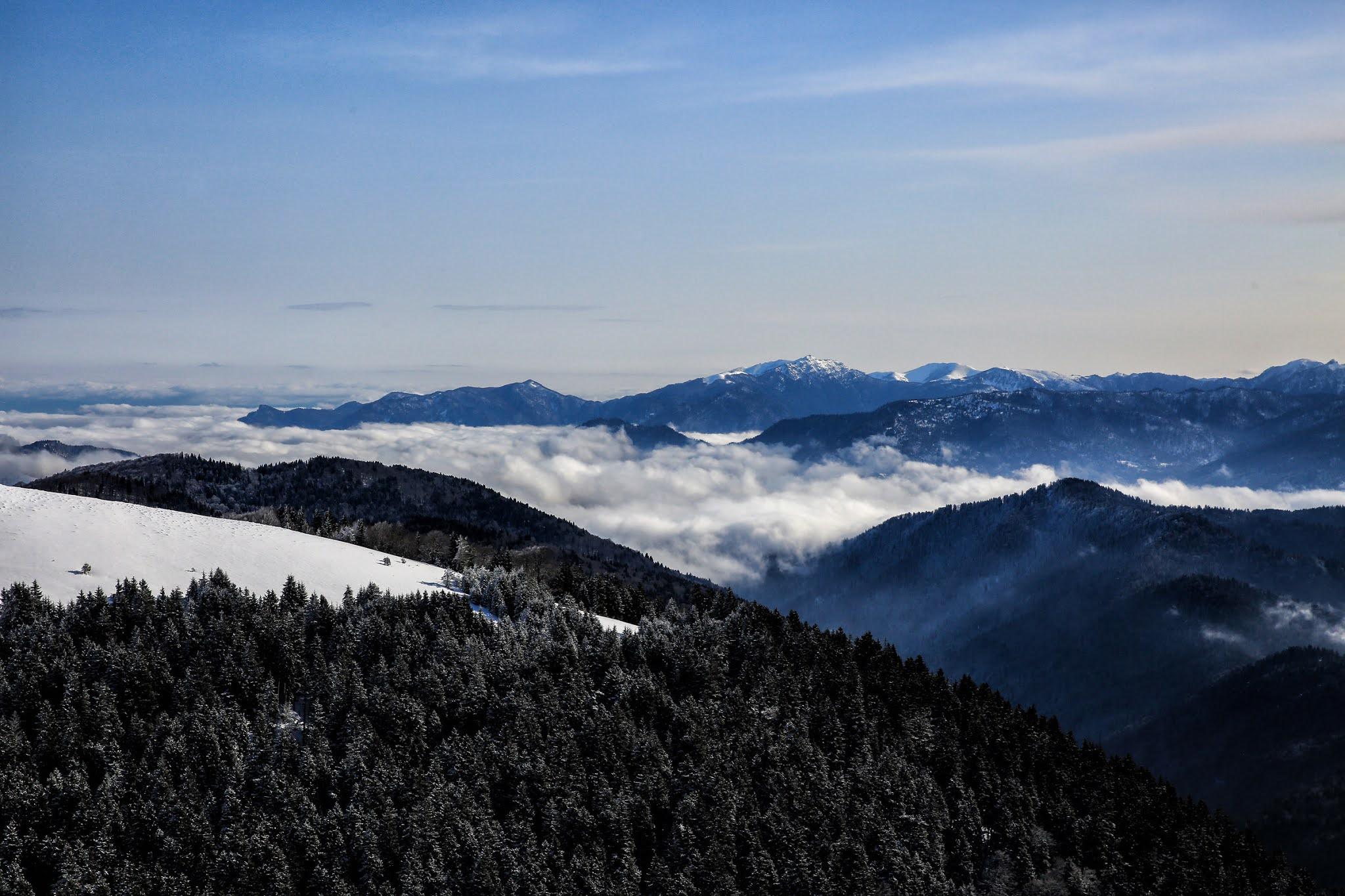 Borjomi-Kharagauli National Park 4