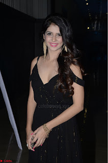 Kashish Vohra at Rogue Movie Audio Launch ~  (28).JPG