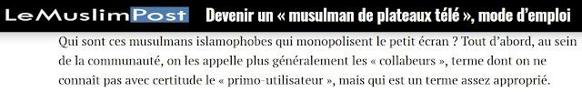 """Le Muslim Post est un média d'information en ligne issu des Frères Musulmans. Comme les autres sites islamistes, ils ciblent les Français d'origine maghrébine qui luttent contre les intégristes. Ils perçoivent ces Français comme des """"collabos"""", avec souvent une dose d'antisémitisme."""