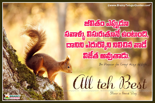 Telugu All The Best Wishes, Messages, Greetings