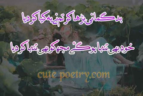 Urdu shayari cute poetry in urdu