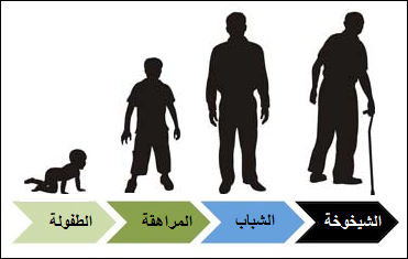 النمو عند الإنسان