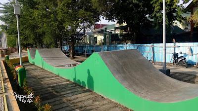 arena skate board