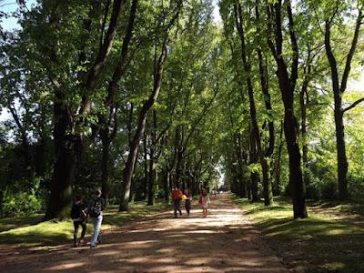 Pessoas no Parque de Serralves