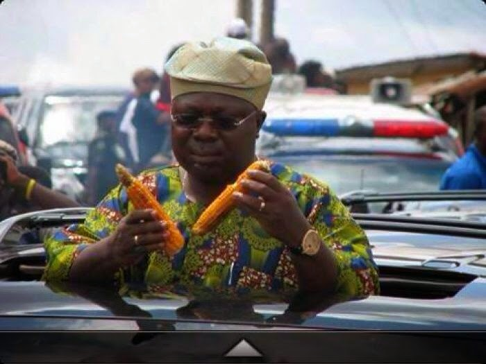 omisore eating corns