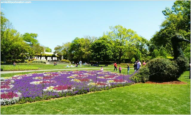 Pavo Real de Flores en el Dallas Arboretum & Botanical Garden