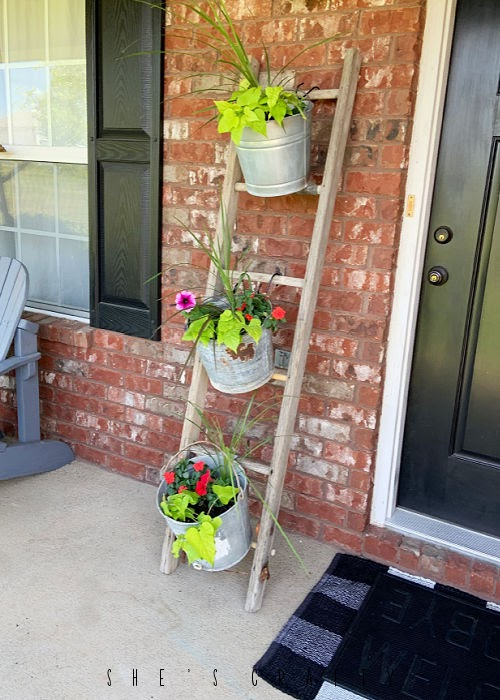 Galvanized Buckets being used as planters.