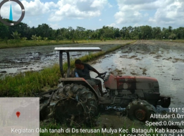 Pengawalan dan Pendampingan Program Food Estate Kecamatan Bataguh Tim BBPP Binuang