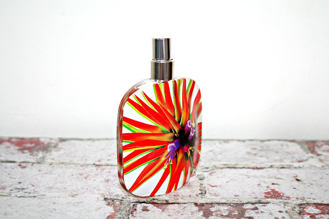 Floral Street Electric Rhubarb Fragrance Floral Design