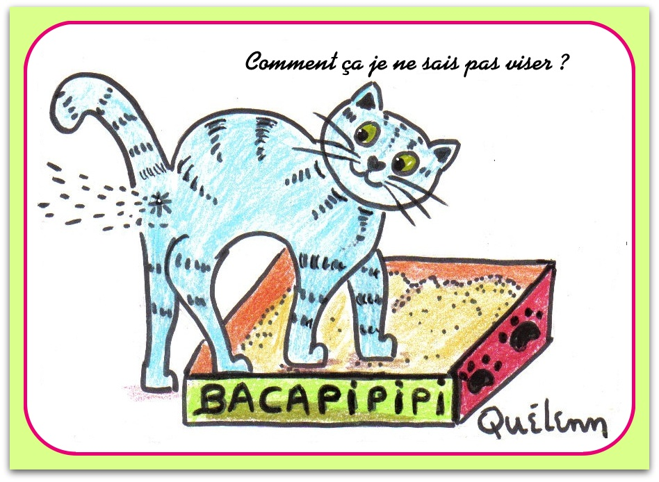 litiere chat dessin