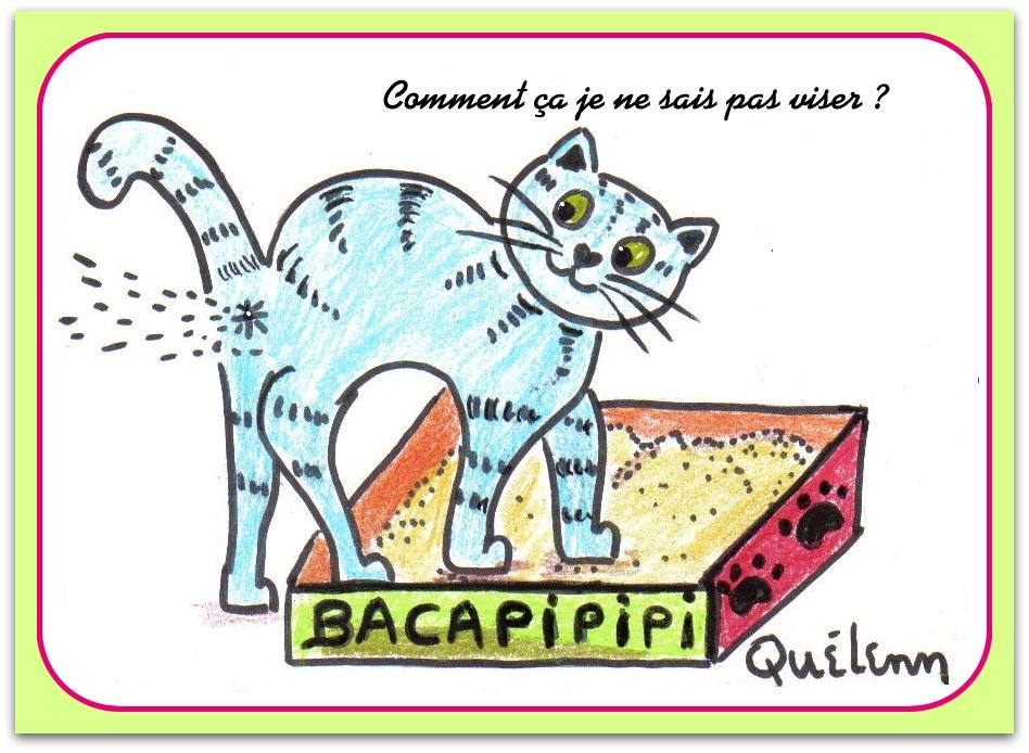 litiere chat dessin