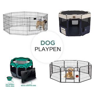 Best Dog Playpens to Buy