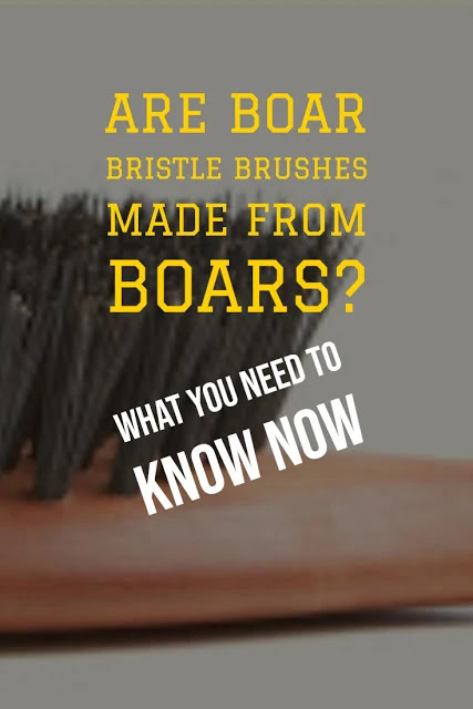 Are Boar Bristle Brushes Made From Boars