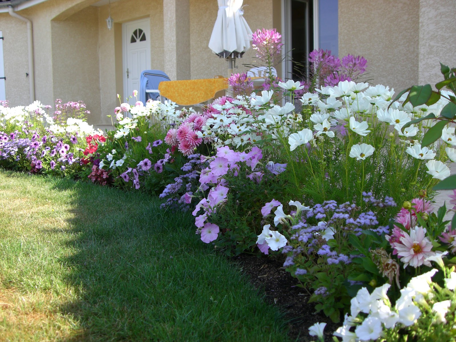 plantes de bordures trendy plantes de bordures with plantes de bordures affordable delightful. Black Bedroom Furniture Sets. Home Design Ideas