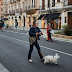 Στην διαδήλωση κατά της κυβέρνησης κι ένας σκύλος