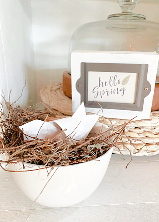 spring sign and birds nest