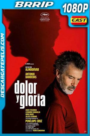 Dolor y gloria (2019) 1080p BRrip Castellano
