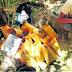 POLICÍA DECOMISA MARIHUANA QUE SE CULTIVABA EN LA SIERRA DE SUNAMPE