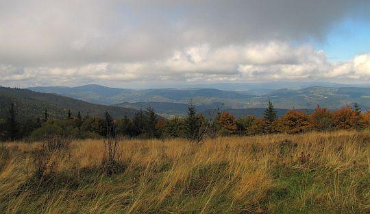 Widok ze Złotej Grapy na północny zachód w stronę Beskidu Małego.