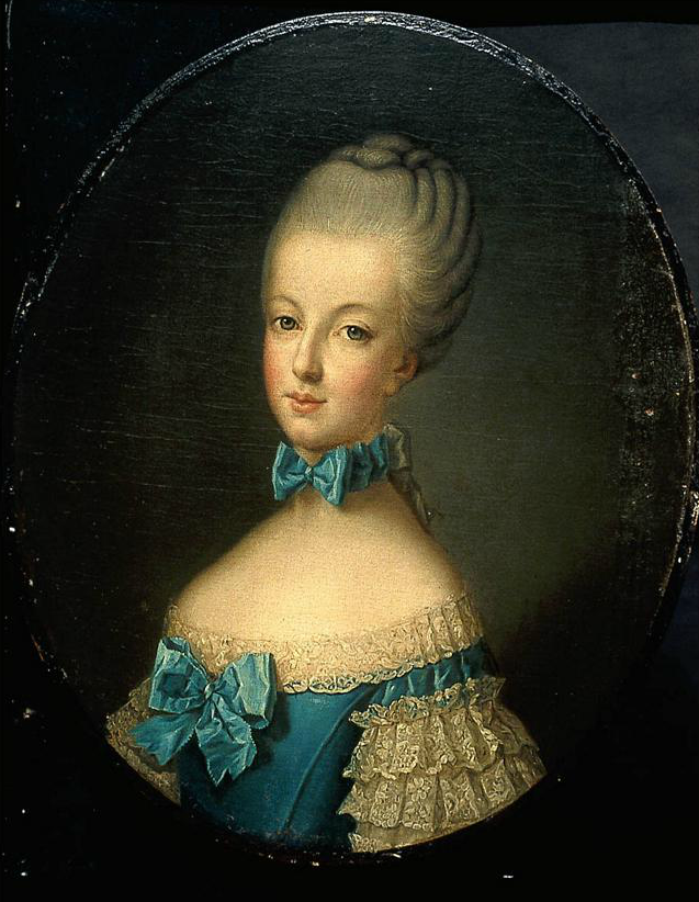 thesis statement on marie antoinette Marie thérèse was the wife of king louis xiv of france, and she lived nearly 100 years before marie antoinette however, confessions was published several decades after her death, and so this theory is rather a controversial and unreliable one.