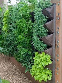 Jardins verticais sugestões e cuidados