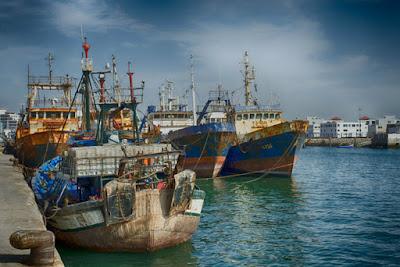 Maroc- Union Européenne - La mer Méditerranée exclue de l'accord de pèche pour préserver les espèces surexploitées.