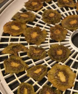 how to dehydrate kiwis, dried kiwi,