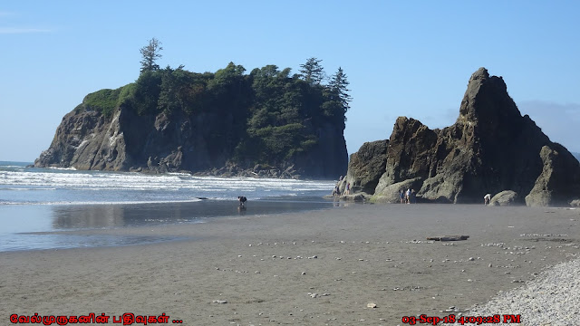 Stunning Sea Stacks Ruby Beach