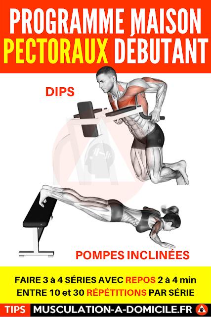 musculation à domicile programme musculation débutant poids du corps et haltère pectoraux triceps