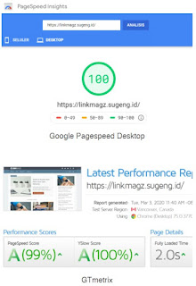 pagespeed linkmagz