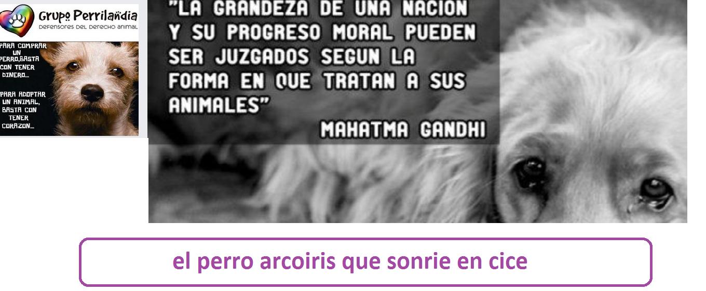 GRUPO PERRILANDIA-EL PERRO ARCOIRIS QUE SONRIE EN CICE