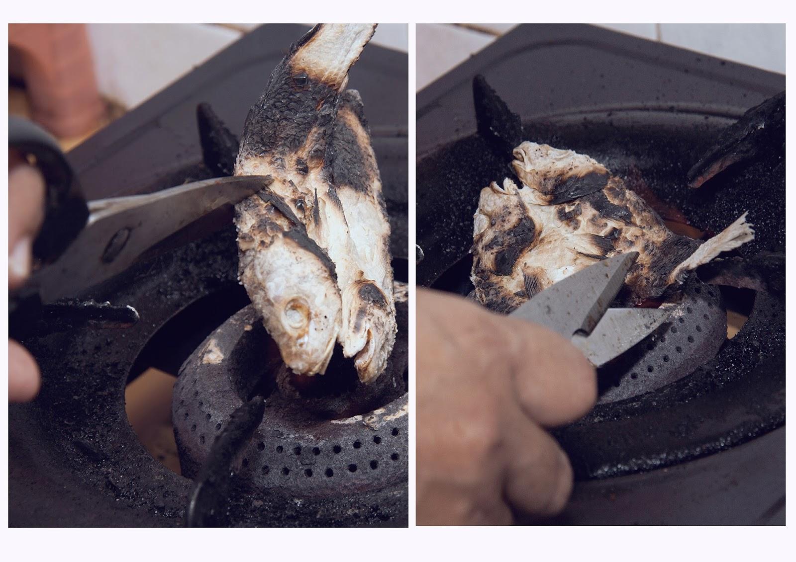 Api Dapur Gas Kecil Desainrumahid Com