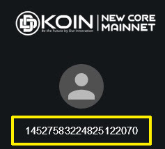 DDKoin Holder - ID Wallet Address DDKoin