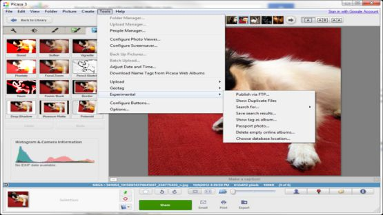Picasa 3.9 Build 141.259 Screenshot 2